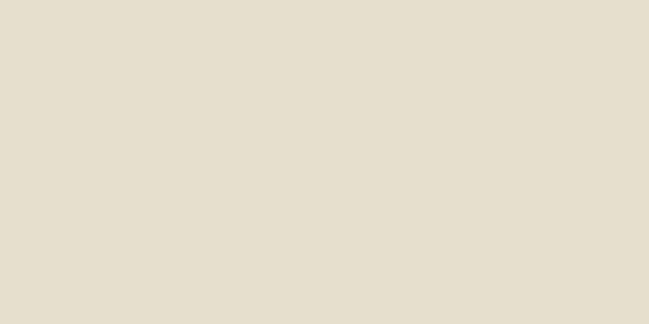 10x20 Miniworx Flat RAL 0958010 Cream Matt
