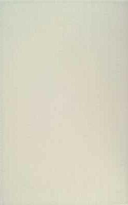 25x40 Elegant Tile White Matt