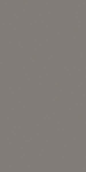 30x60 Skyline Tile Grey Matt